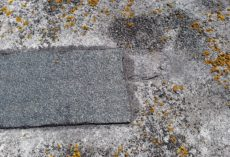 Felt repair to Asphalt roof